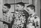 4 juvenile delinquent anti drug reefer madness anti marijuana drug education films movie download