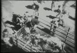 06 World War II WWII Newsreel Footage Collection Movie Download