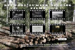 forestry logging lumberjack films movie download 18