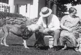 1933 Chicago World's Fair Films movie download 12